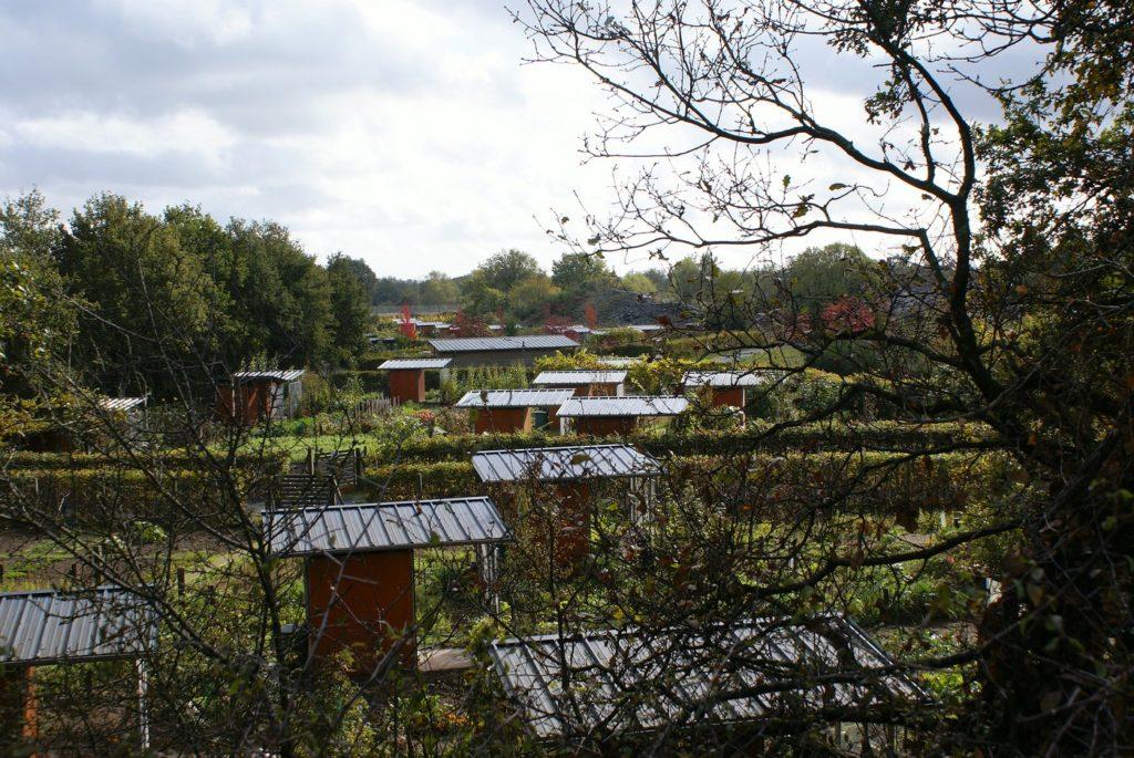 les jardins partagés de la ville de Trélazé