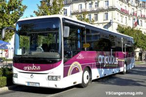Anjou bus 49