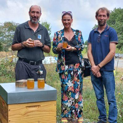 Photo de l'article Du miel made in Trélazé !